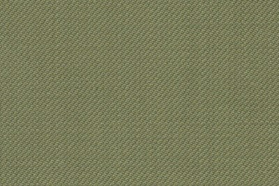 Plain Pea Green