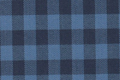 Navy & Sky Blue Gingham check